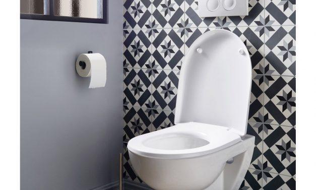 WC suspendu Grohe : Quel est l'objet du WC ?